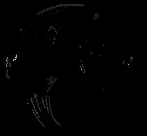 logo_p73