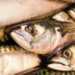 Cronaca di un pesce a canestro